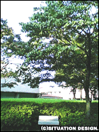 砧公園、美術館付近